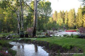 stream-before-waterfall1-500x332