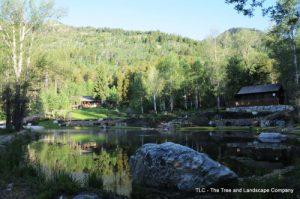 vista-across-pond11-500x332